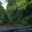 Riding on muddy forest road - timelapse — Wideo stockowe