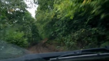 Riding on muddy forest road - timelapse — Vídeo de stock