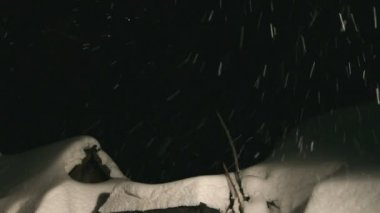 Falling snow on the roof at night — Stock Video