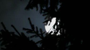 Timelapse avec l'information de vol de nuit et de la lune entre les nuages — Vidéo