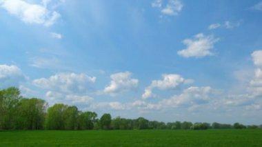 Paisaje-pasto y un cielo con nubes — Vídeo de stock