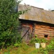 Old obsolete russian bath-house in lush foliage — Stock Video