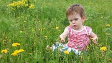 Baby with dandelions on green spring lawn — Stock Video
