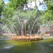 Sun fountain in petergof park St. Petersburg Russia - timelapse — Stock Video