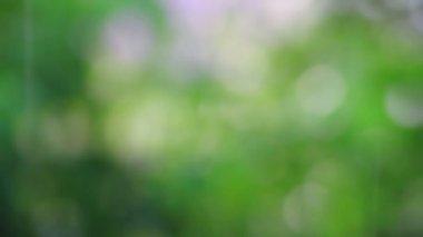 Abstracte zomer regen intreepupil achtergrond — Stockvideo