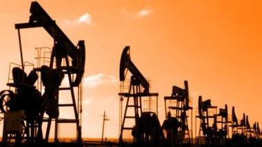 řádek mnoha pracovních oleje čerpadla silueta — Stock video