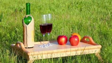 Picnic - tabe with wine and fruits — Stock Video
