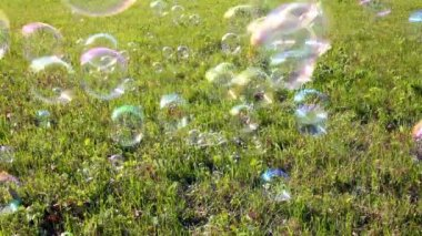Soap bubbles flying over green meadow — Stock Video