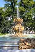 Fountain in renovated Summer garden — Stock Photo