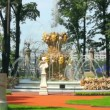 Renovated Summer garden park in St. Petersburg Russia — Stock Video