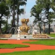 Renovated Summer garden park in St. Petersburg Russia - Stock Photo
