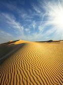 Evening desert — Stock Photo