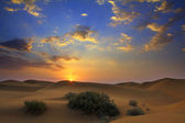 Sunrise in desert — Stock Photo