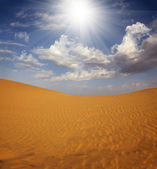 Landsape in Tar desert India — Stock Photo