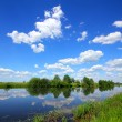Beautiful summer lake landscape — Stock Photo