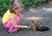 Menina esquilo de alimentação com nozes — Fotografia Stock