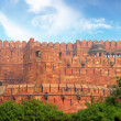 Red fort wall in Agra — Stock Photo