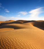 Landsape in desert — Stock Photo