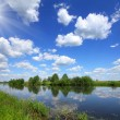 Stock Photo: Beautiful summer lake landscape