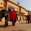 Tourists on elephants in Jaipur fort India — Stock Video #36979115