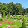 Stock Video: Romfountains in petergof park St. Petersburg Russia