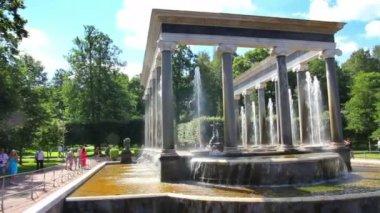 Leeuw trapsgewijs fontein in petergof park st. petersburg, rusland — Stockvideo