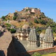 Kumbhalgarh fort in rajasthan India — Stock Video