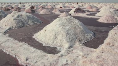 Salt mining on Sambhar lake in India — Stock Video