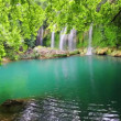 Waterfall in forest - Kurshunlu Turkey — Stock Video #38720141