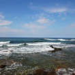 Mediterranean sea with waves landscape in Turkey — Stock Video