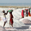 Salt mining on Sambhar lake in India — Stock Photo #39954701