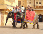 Tourists on elephants in Jaipur fort India — Stok fotoğraf
