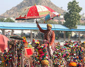 Competition to decorate camels at Pushkar camel fair — Stock Photo