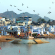 Holy lake in Pushkar India — Stock Photo #39966049