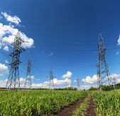 Electric masts and road in green field — Foto de Stock