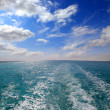Trace of ship - shooting from boat — Stock Photo #44983945