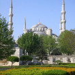 The Blue Mosque in Istanbul, Turkey — Stock Photo #11227340