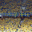 Sweden fans at NSC Olympic stadium during UEFA EURO 2012 game — Stock Photo #13499832
