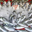 Snapper fish in ice on a market stall — Stock Photo
