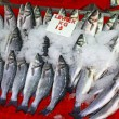 Seabass fish in ice on a market stall — Stock Photo #23133226