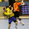 Handball game Ukraine vs Netherlands — Stock Photo #23549751