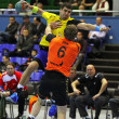 Handball game Ukraine vs Netherlands — ストック写真 #23549753