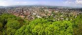 Panoramic view of Freiburg im Breisgau city, Germany — Stock Photo