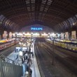 Hamburg Hauptbahnhof - central railway station in Hamburg, Germany — Stock Video