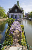 Water canals on Grand Ile island in Strasbourg, France — Stock Photo