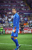 Goalkeeper Maarten Stekelenburg of Netherlands — Stok fotoğraf