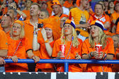 UEFA EURO 2012 game Netherlands vs Germany — 图库照片