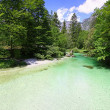 Sava Bohinjka river in Julian Alps, Slovenia — Stock Photo #50408613