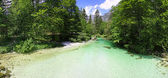 Sava Bohinjka river in Julian Alps, Slovenia — Stock Photo