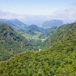 Aerial view of mountains on Madeira island — Stock Photo #51351577